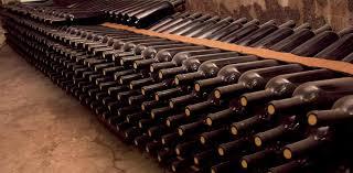 sotano de vinos2