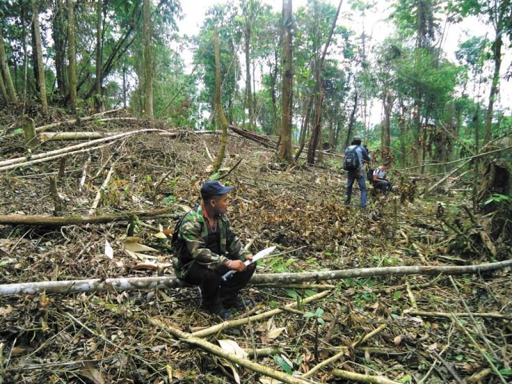 http://www.laprensa.com.ni/2014/12/28/nacionales/1671329-bosawas-tierra-de-conflictos-2